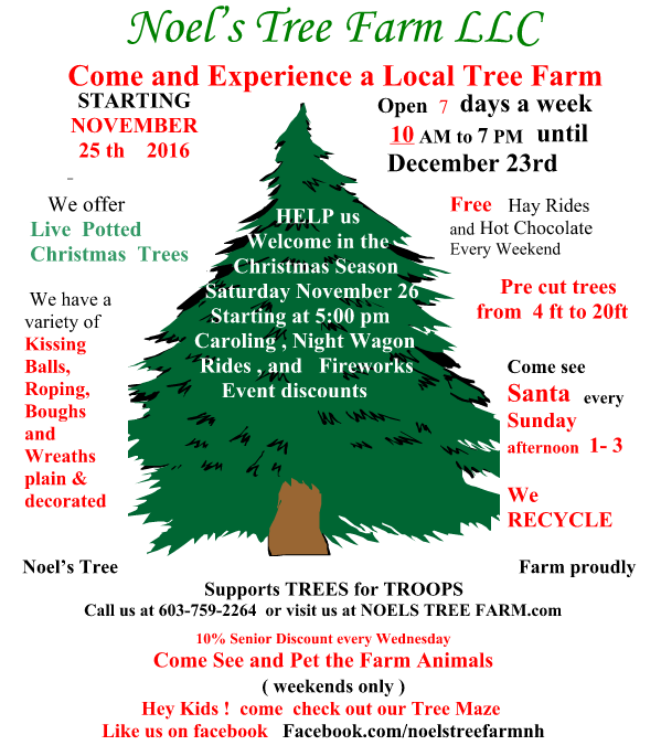 noels tree farm - How To Start A Christmas Tree Farm