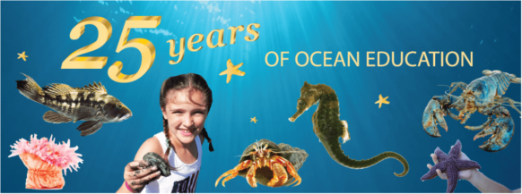 Seacoast Science Center: Celebrating 25 Years!